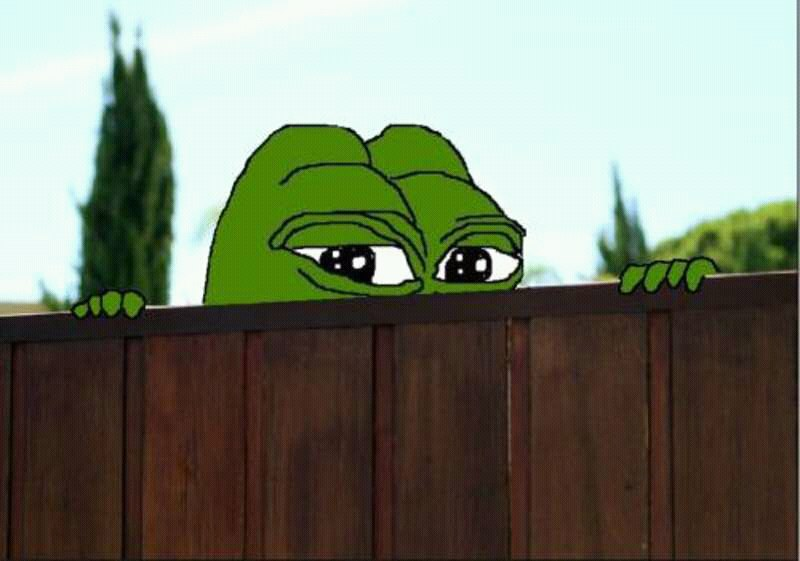 Pepe The Frog Fence